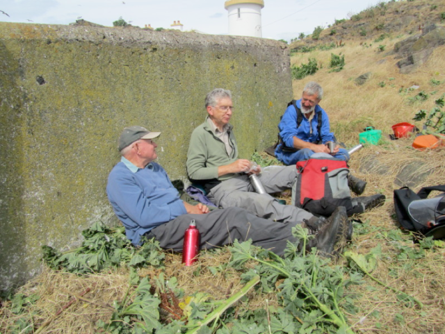 Howard Andrew, Bill Bruce and David Ross relaxing on Fidra after a hearty lunch of tree mallow.